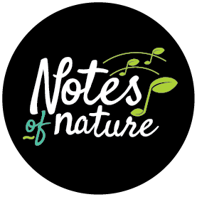 Notes of Nature