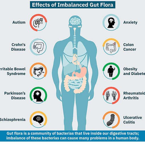 Impact of Gut Imbalances